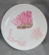 2020変形菌絵皿ウツボホコリ