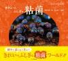 きれいで不思議な粘菌
