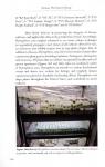 Dionaea5.jpg