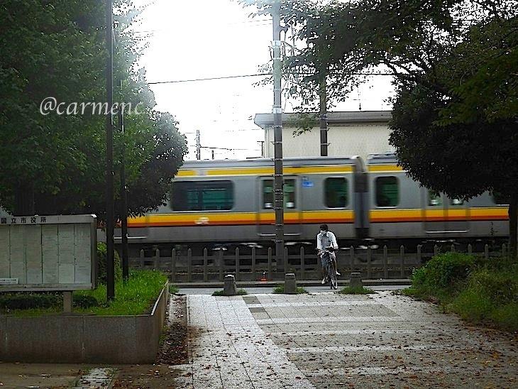 P9170052.jpg