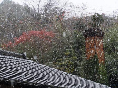 初雪7(2020-12-15)