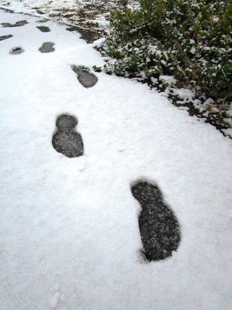 雪の足跡2(2020-12-31)