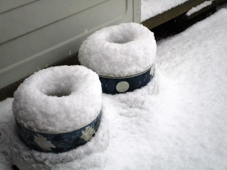 雪景色5(2021-02-18)