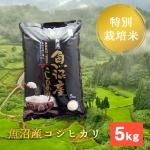 棚田米 5k