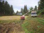 稲刈り、ラストスパート