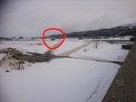 信濃川河川敷の雪捨て場