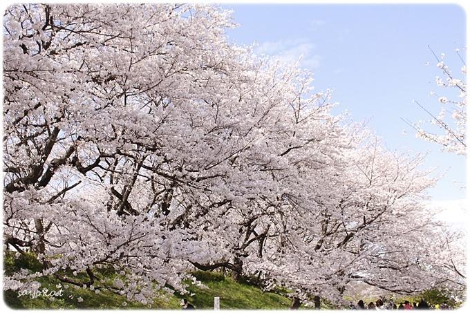 sayomaru29-609.jpg
