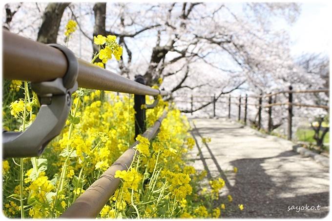 sayomaru29-611.jpg