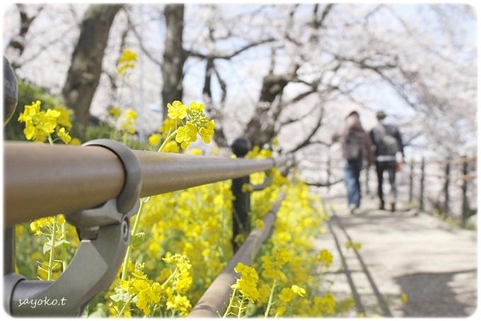 sayomaru29-613.jpg