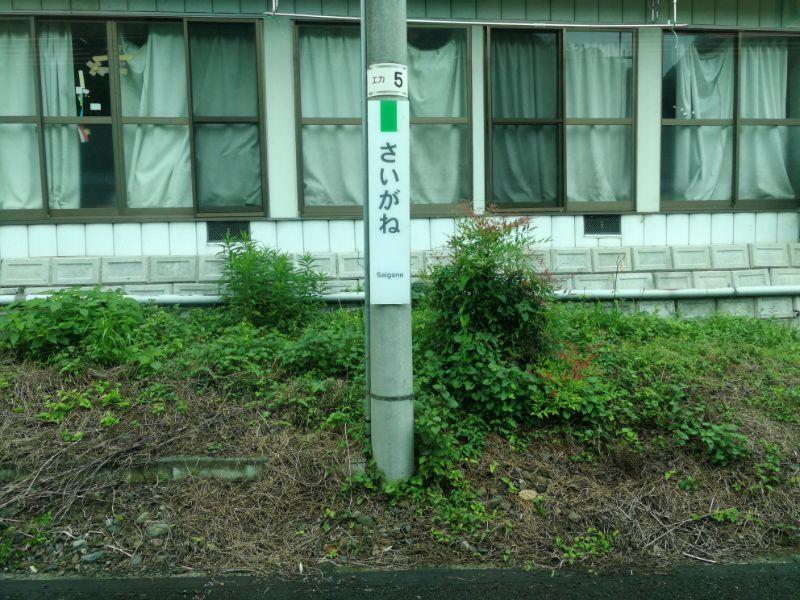 袋田ツアー_9