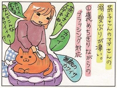茶子ちゃんへの愛2 1-2