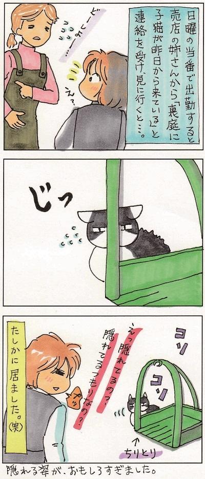 子猫は場所を選ばない 2-2