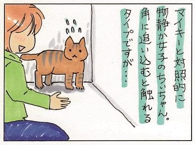 ちぃちゃんの思い 1-2