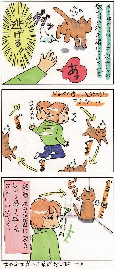 ちぃちゃんの思い 2-2