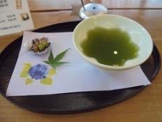 ブログ7八女茶サービス