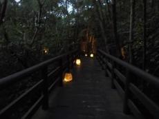 ブログ37橋