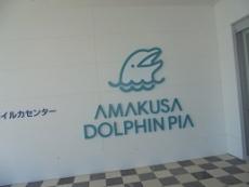 ブログ2天草イルカセンター