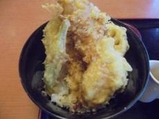 ブログ9天丼