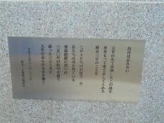ブログ3天草島民