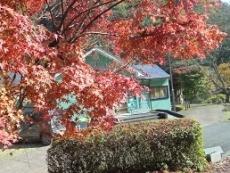ブログ9紅葉と喫茶店