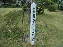 ブログ37秋篠宮お手植え梅