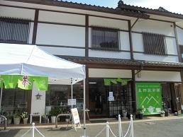 ブログ4星野製茶園