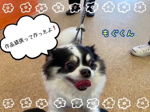 fc2blog_2020112213192022f.jpg
