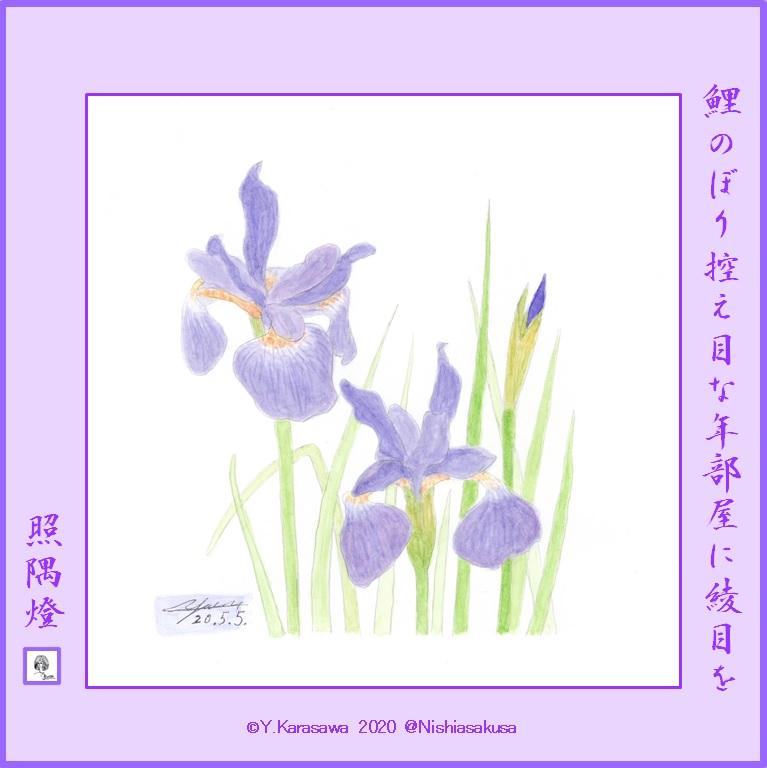 200505綾目LRG