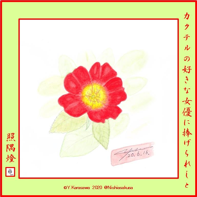 200616一重の蔓薔薇カクテルLRG