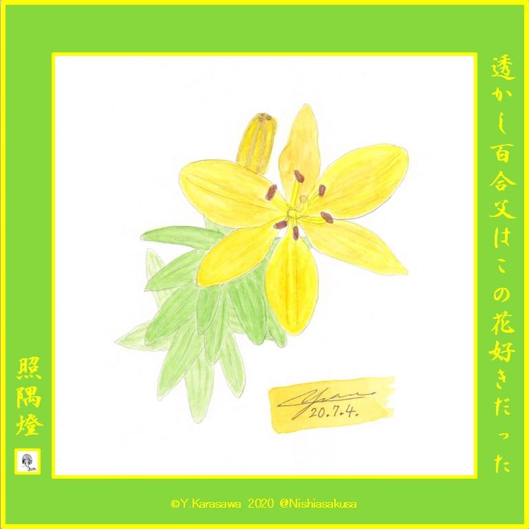 200704黄色い透かし百合LRG