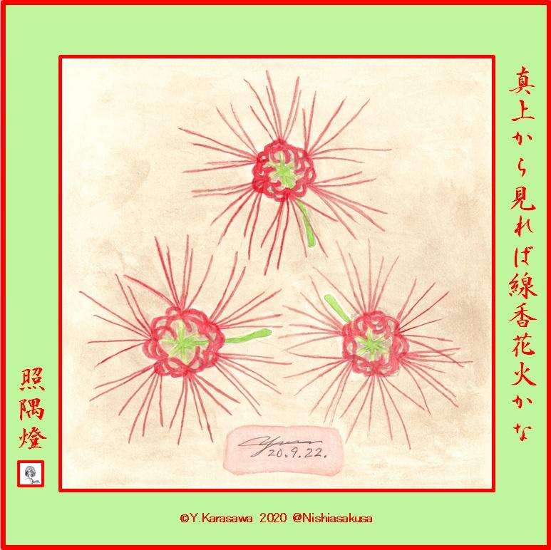 200922彼岸花LRG