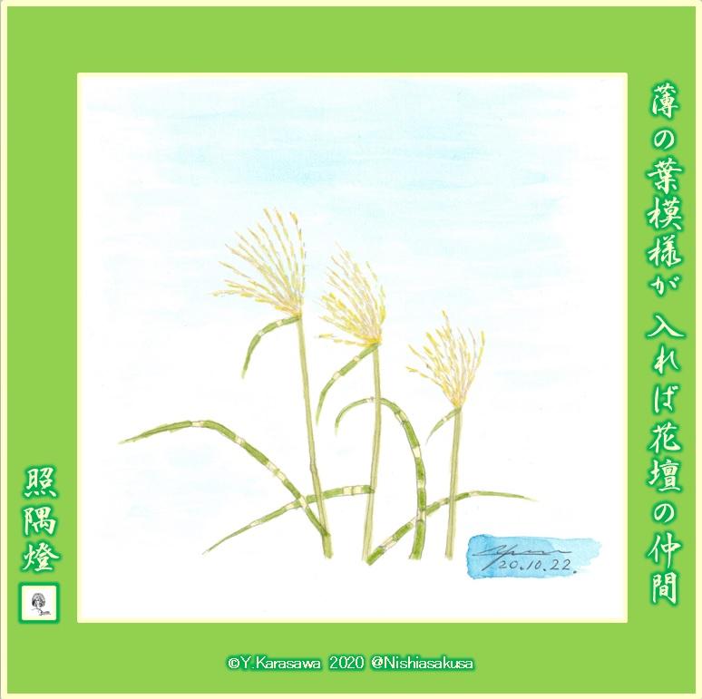 201022鷹羽薄LRG