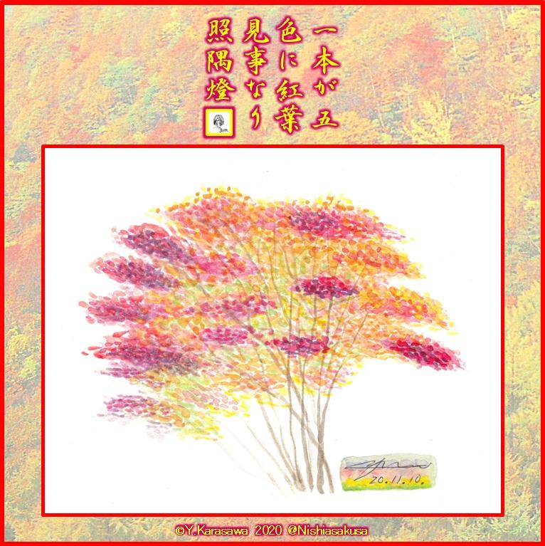 201110五色紅葉LRG