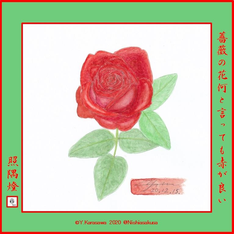 201215赤い薔薇LRG