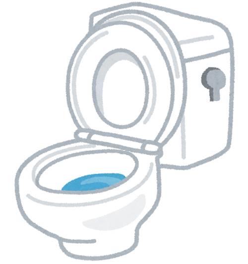 toilet_benza.jpg