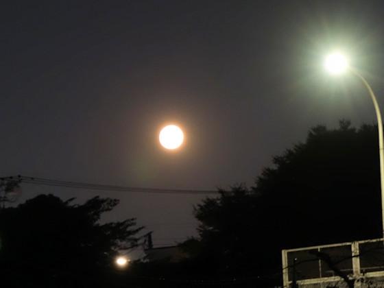 chuhu_moon_2002_1.jpg