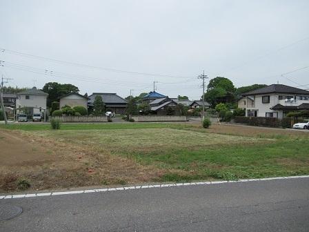大角豆880-1