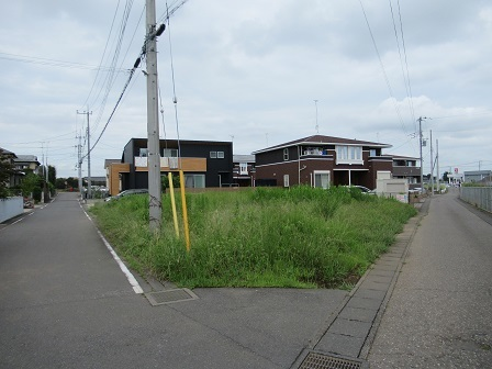 大角豆2012-490