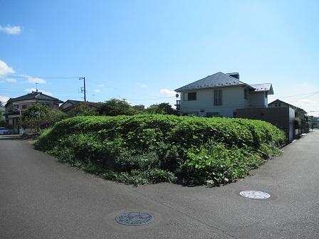 自由ヶ丘823-13