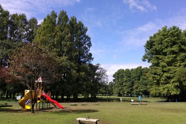 A公園K森20201011