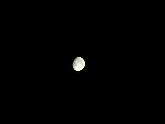 P1000_Moon_300mm.jpg