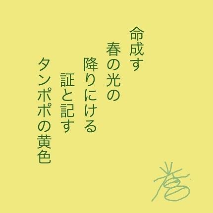 タンポポの黄色 - コピー