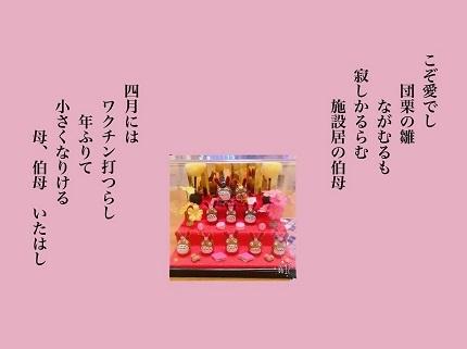 団栗の雛6 - コピー