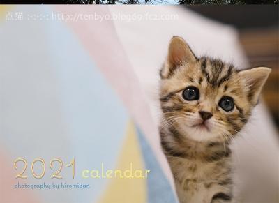 ☆「めぐしうつくし -点猫16-」初日☆