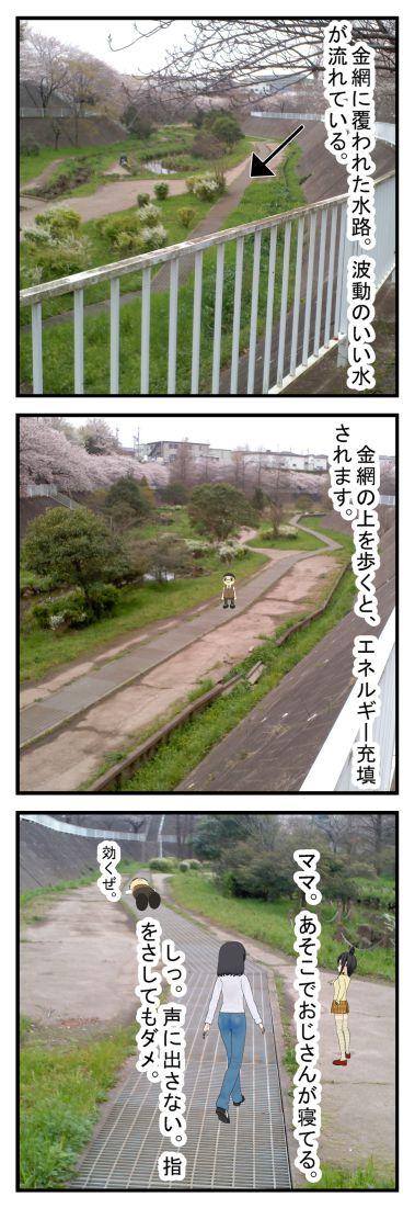 六方調整池多目的施設の水路と桜 千葉市若葉区_001