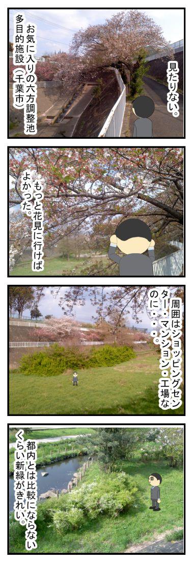 葉桜の季節に、毎年思うこと。
