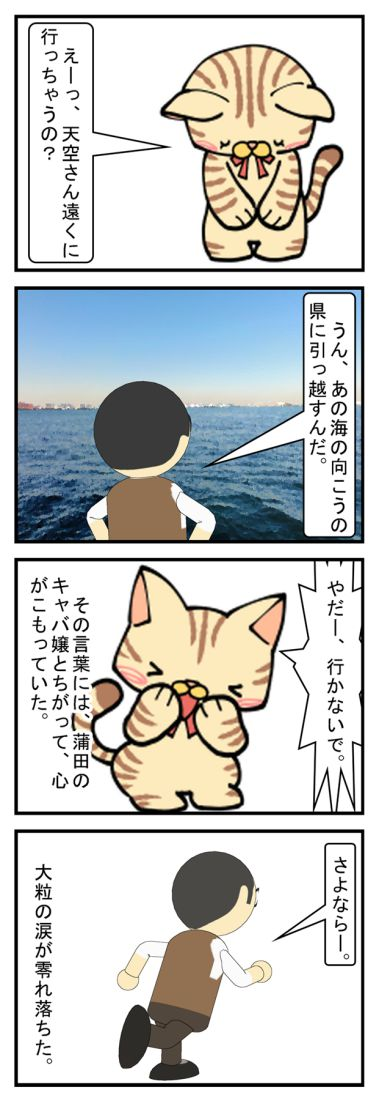 別れ 城南島の捨て猫編