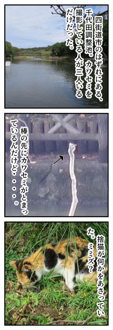 四街道便り 42 千代田調整池_001_