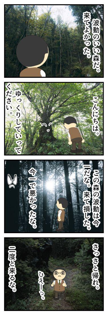 木と話ができたら・・・。