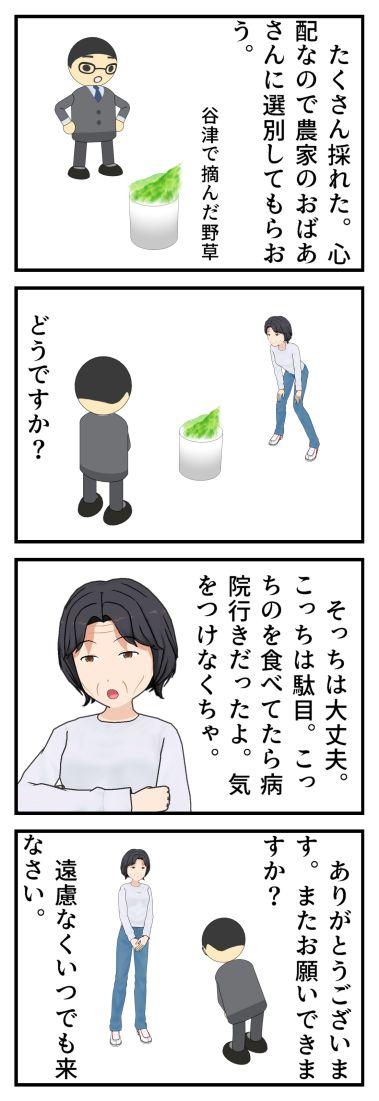 食べられる野草、食べられない野草 ブラック企業編_001
